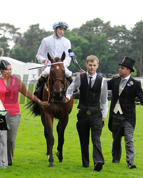 Belgian Bill James Doyle up, wins the Royal Hunt Cup, Royal Ascot; UK, photo by Mathea Kelley; 6/19/13