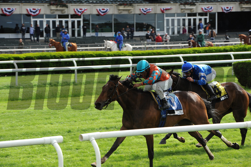 Tannery wins the 2013 Sheepshead Bay.<br /> Coglianese Photos/Chelsea Durand