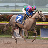 Puddifoot wins the 2013 Juvenile Filly Sprint Stakes.<br /> Coglianese Photos