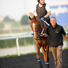 Red Cadeaux, March 27th, 2013, photo by Mathea Kelley, Dubai World Cup 2013, Dubai World Cup;