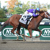 Princess of Sylmar wins the 2013 Beldame.<br /> Coglianese Photos