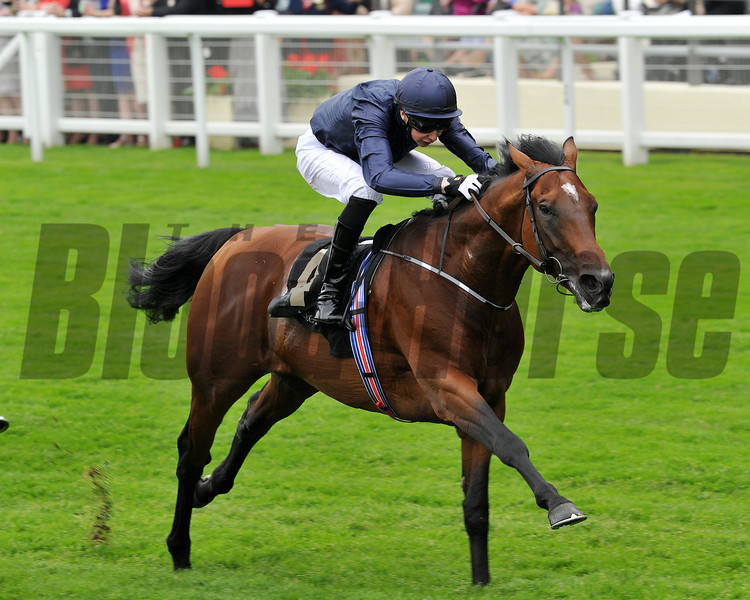 Declaration of War, Jospeh Obrien up, wins the Queen Anne Stakes, Royal Ascot, UK, photo by Trevor Jones