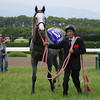 Dual Japanese classic winner Gold Ship earned a Breeders' Cup Turf (gr. IT) berth when shaking off Gentildonna and charging past leader Danon Ballade for a clear win in the Takarazuka Kinen (Jpn-I) June 23 at Hanshin Racecourse.<br /> Naoji Inada Photo