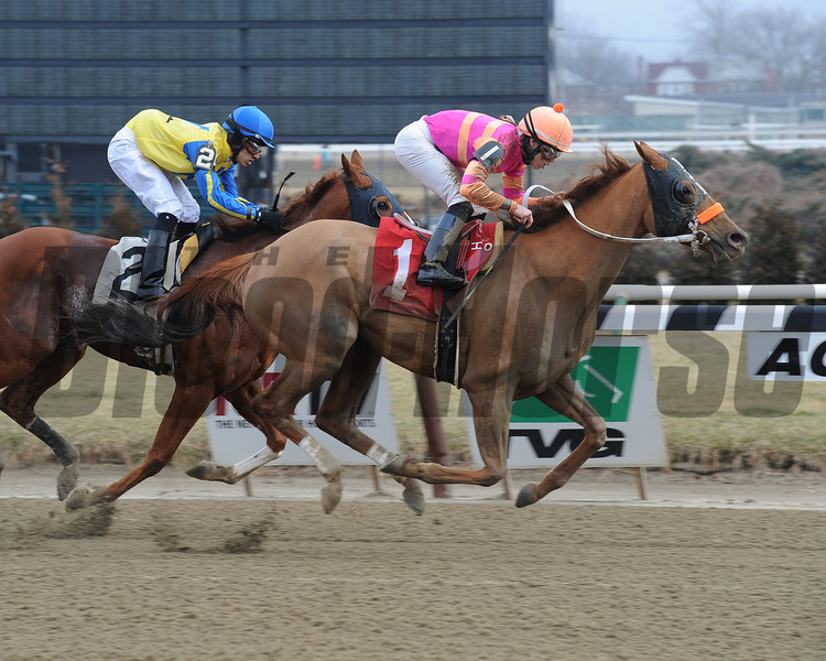 Ruler On Ice - Allowance win, January 30, 2013.<br /> Coglianese Photos