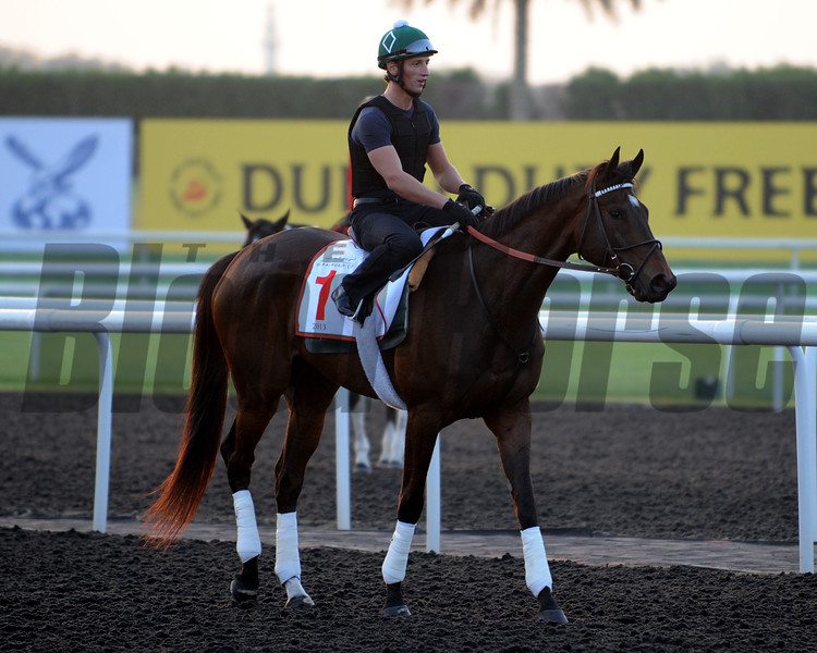 Royal Delta<br /> Dubai March 27, 2013<br /> Photo by Dave Harmon