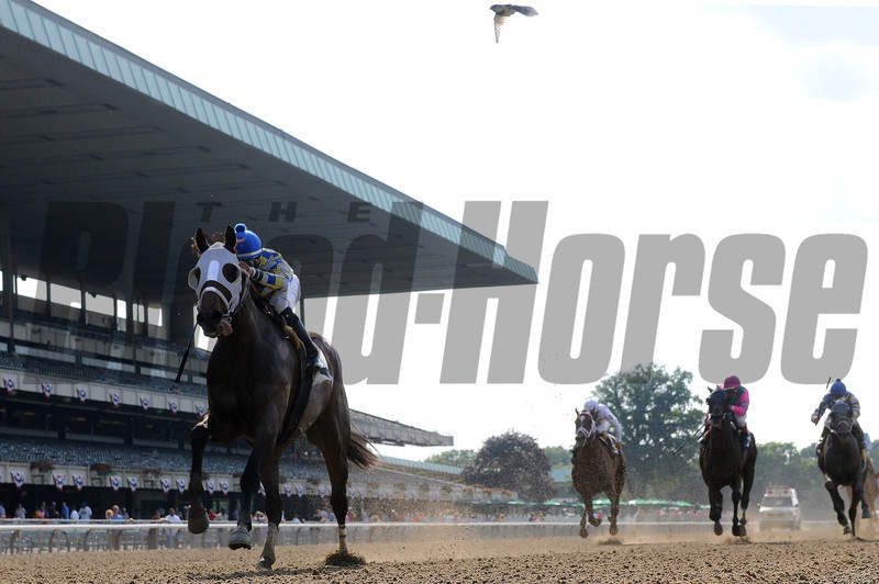 Moreno wins the 2013 Dwyer Stakes.<br /> Coglianese Photos