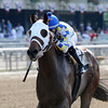 Moreno wins the 2013 Dwyer Stakes.<br /> Coglianese Photos