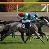Verxina wins the Victoria Mile in Japan.<br /> Photo by Naoji Inada