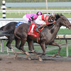 Orb wins the 2013 Fountain of Youth.<br /> Coglianese Photos