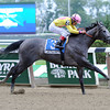 My Happy Face wins the 2013 Lotka Stakes.<br /> Coglianese Photos/Courtney Heeney