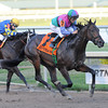 Itsmyluckyday wins the 2013 Holy Bull.<br /> Coglianese Photos/Courtney Heeney