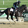 Honor Code works 10/27/2013<br /> Coglianese Photos