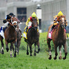 Wise Dan, Jose Lezcano up, wins the Woodford Reserve Turf Classic 2013 Churchill Downs, Louisville, KY photo by Mathea Kelley