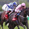 Racing from Leopardstown 7/9/13. The Red Mills Irish Champion Stakes.<br /> The Fugue ridden by William Buick wins from Al Kazeem and Trading Leather (obscured)<br /> Trevor Jones Photo
