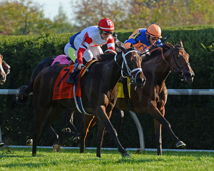 Kittens Dumplings, Julien Leparoux up, wins the QE11 challenge cup, Keeneland Race Course; Lexington; photo by Mathea Kelley; 10/12/13;