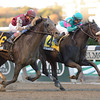 Stanwyck wins the 2013 Turnback the Alarm Handicap.<br /> Coglianese Photos