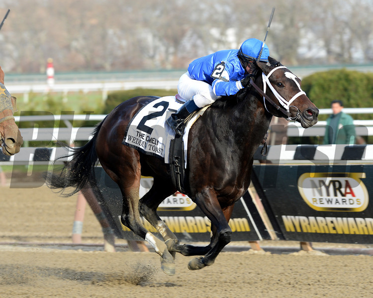 Wedding Toast wins the 2013 Comely.<br /> Coglianese Photos