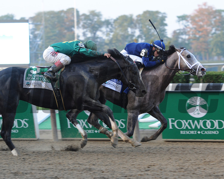 Havana wins the 2013 Champagne.<br /> Coglianese Photos