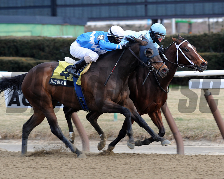 Cluster of Stars (inside) wins the 2013 Correction Stakes.<br /> Coglianese Photos