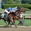 Bahnah and Brazen Persuasion dead heat in the 2013 Schuylerville.<br /> Coglianese Photos