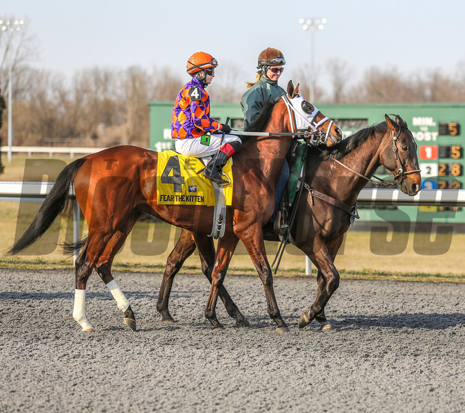 Fear The Kitten at Turfway Park on March 23, 2013<br /> ©Photo by: Kevin Thompson