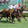 Kitten's Dumplings wins the 2013 Lake George.<br /> Coglianese Photos