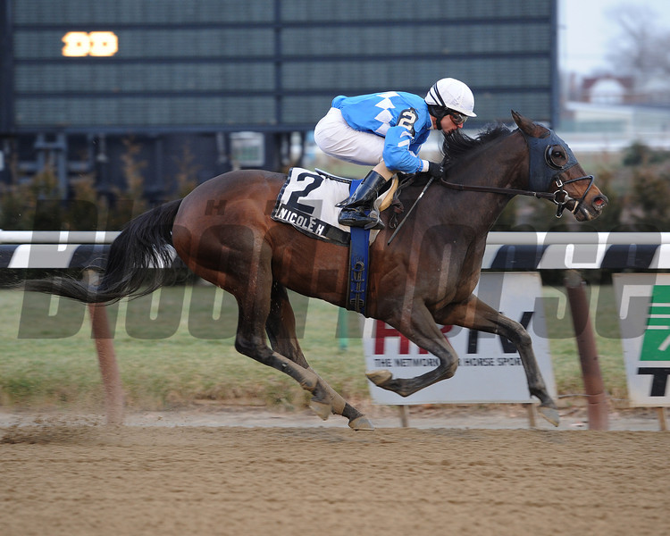 Nicole H captures the 2013 Interborough stakes at Aqueduct New York, 01/01/2013.<br /> Coglianese Photos