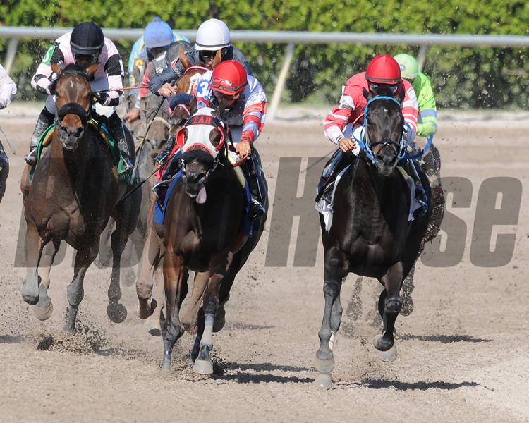 Carolina Lizard wins the 2013 Iron Lady Stakes.<br /> Coglianese Photos