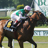Starformer wins the 2013 New York Stakes.<br /> Coglianese Photos