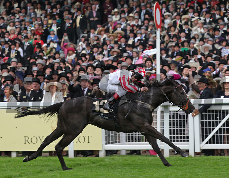 Racing from Ascot 18/6/13. The Kings Stand Stakes.<br /> Sole Power ridden by Johnny Murtagh wins on the line.<br /> Trevor Jones Photo