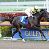 Aubby K wins the Inside Information.<br /> Coglianese Photos/Courtney Heeney