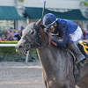 My Pal Chrisy wins the 2013 Musical Romance.<br /> Coglianese Photos/Kenny Martin
