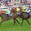 Racing from York 23/8/13. The Coolmore Nunthorpe Stks.<br /> Jwala ridden by Steve Drowne wins from Shea Shea (6) with Sole Power (extreme right)