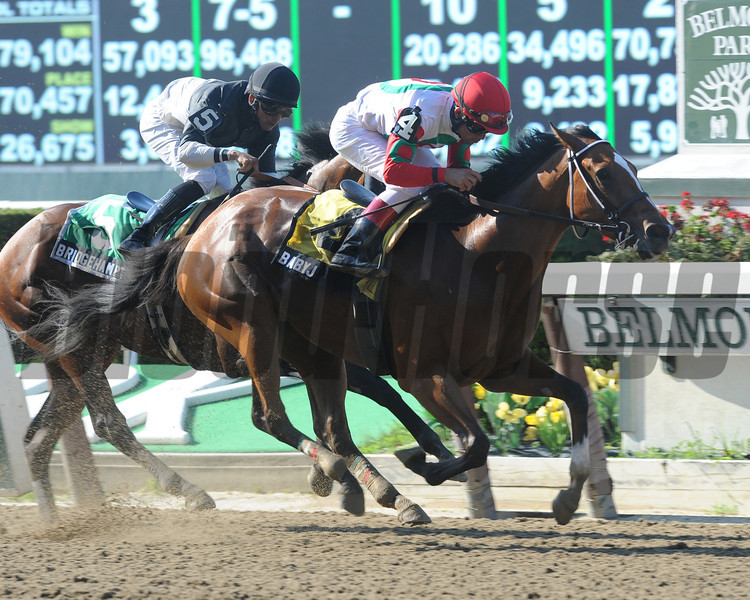 Baby J wins the 2013 Victory Ride Stakes.<br /> Coglianese Photos