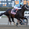 Verrazano wins the 2013 Wood Memorial.<br /> Coglianese Photos/David Alcosser