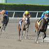 Live Lively wins the 2013 Davona Dale.<br /> Coglianese Photos/Eleanor Gustafson