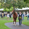 Groupie Doll, Rajiv Maragh up , Keeneland Race Course, Lexington, KY, 10/6/13, photo by Mathea Kelley;