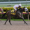 Black Diamond Cat wins the 2013 Housebuster.<br /> Coglianese Photos/Beth Arkin