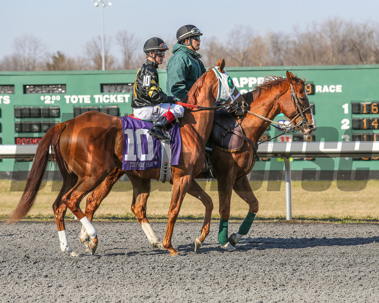 Broken Spell at Turfway Park on March 23, 2013<br /> ©Photo by: Kevin Thompson