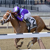 Princess of Sylmar wins the 2013 Busher Stakes.<br /> Coglianese Photos/Joe Labozzetta
