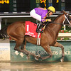 12/14/2014  -  Raiseanothergator with Richard Eramia aboard draws away in the slop to easily win the Louisiana Champions Day Handicap Stakes at Fair Grounds in New Orleans. Hodges Photography / Lou Hodges, Jr.