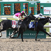 3/30/2013  -  Revolutionary with Javier Castellano aboard pulls ahead of Mylute to capture the 100th running of the $1,000,000 Grade II Louisiana Derby at Fair Grounds.  Hodges Photography / Lou Hodges, Jr.