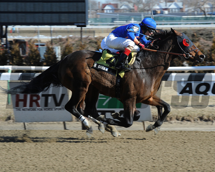 Saginaw wins the 2013 Hollie Hughes Stakes.<br /> Coglianese Photos