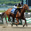 Dance to Bristol wins the 2013 Bed o' Roses.<br /> Coglianese Photos