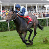 Kingston Hill wins the 2013 Racing Post Trophy.<br /> Trevor Jones Photo