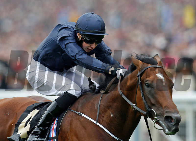 Racing from Royal Ascot !8/6/13. The Queen Anne Stakes.<br /> Declaration of War ridden by Joseph O'Brien wins with ease.<br /> Trevor Jones Photo