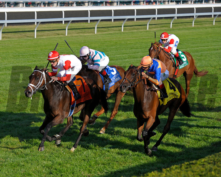 Kitten's Dumplings with Julien Leparoux up wins the Queen Elizabeth II Challenge Cup STakes (gr. IT) at Keeneland on Oct. 12, 2013, in Lexington, Ky.<br /> QEIIJpegs1 image 8157<br /> Photo by Anne M. Eberhardt