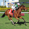 Starformer wins the Very One Stakes (gr. 3)<br /> Jockey: Edgar Prado<br /> GULFSTREAM PARK, Hallandale, FL<br /> Purse: $100,000<br /> Date: February 16, 2013<br /> Class: Grade 3<br /> TV: HRTV<br /> Age: 4 yo's & up<br /> Race: 8<br /> Distance: One And Three Eighth Miles<br /> Post Time: 4:05 PM<br /> Photo by: Leslie Martin / Coglianese Photo;
