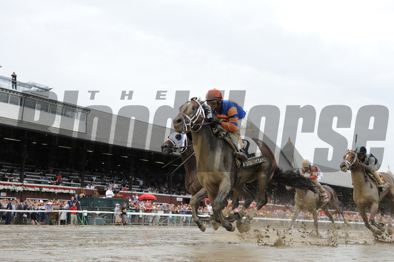 Notacatbutallama wins the 2013 Hall of Fame.<br /> Coglianese Photos/Adam Mooshian
