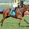 Twilight Eclipse wins the 2013 Pan American.<br /> Coglianese Photos/Courtney Heeney